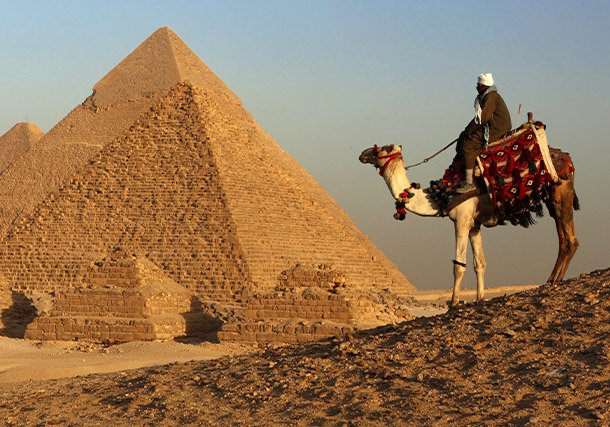 Middle East Egypt Pyramids Camel Local search