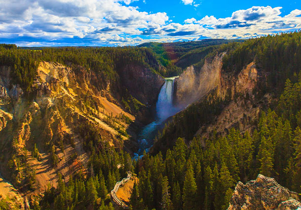 North America Yellowstone National Park search