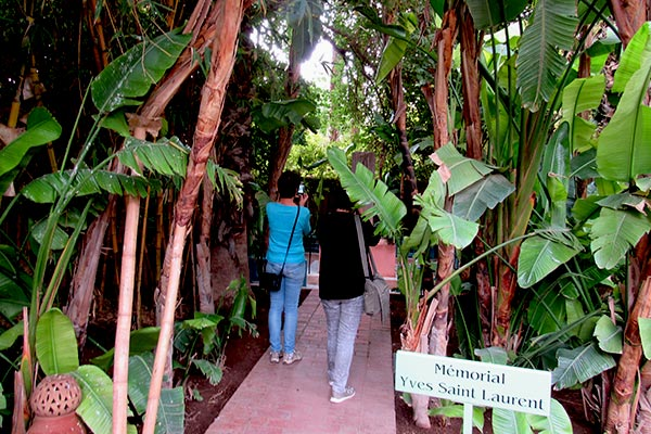 The path to the Yves Saint Laurent memorial in the Jardin Majorelle in Marrakech.