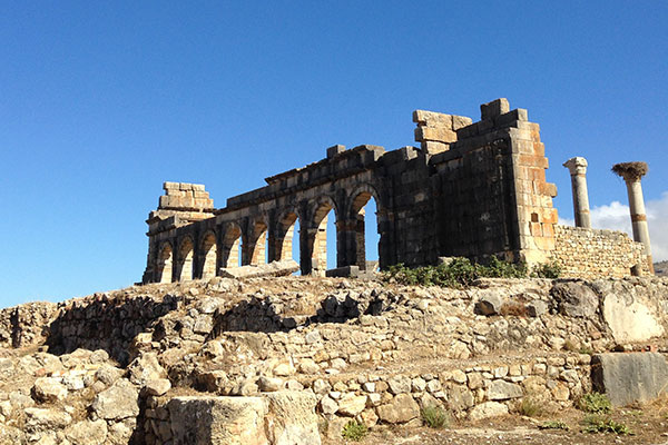 Exploring the stunning Roman ruins at Volubilis.