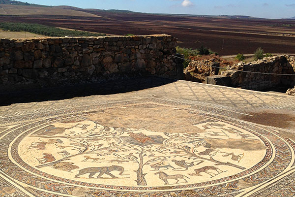 House of Orpheus circular floor mosaic, Volubilis.
