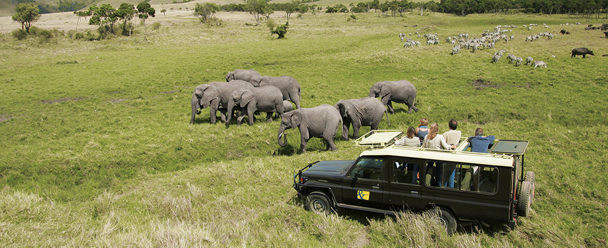 East Africa Game Viewing