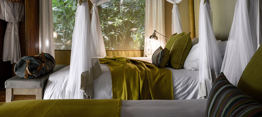 africa east africa uganda sanctuary gorilla forest camp guest room