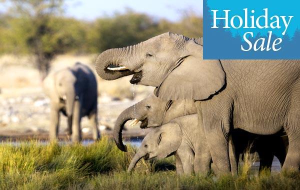 2020 Holiday Sale Botswana 2