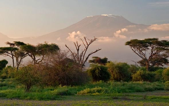 Climb Kilimanjaro: Summiting the Machame Route