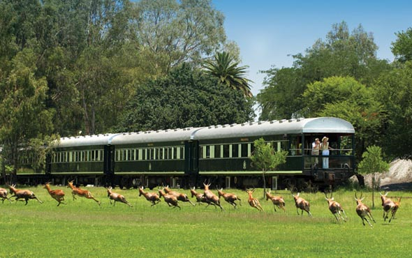 Southern Africa Safari by River & Rail