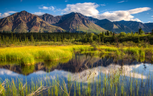 Alaska: Wilderness & Wildlife