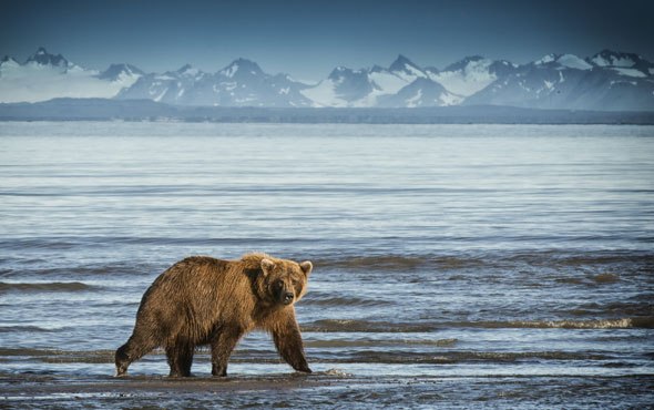 Alaska: Home-Grown Wilderness Adventure