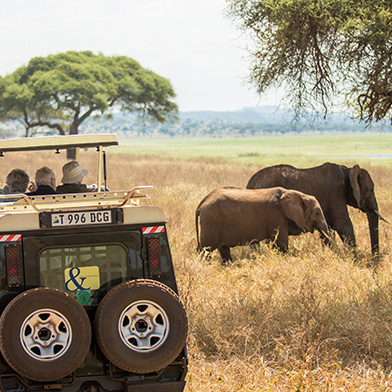 Africa Tanzania Safari Vehicle Elephants