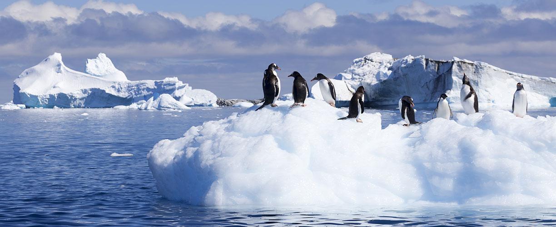 National Geographic Tours >> Antarctica Cruise: Luxury Antarctica Expedition 2018 | Abercrombie & Kent