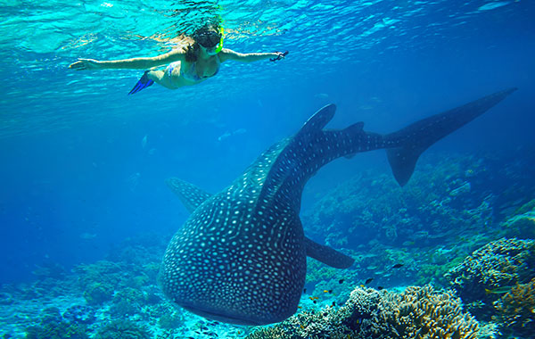 Kimberley-Ningaloo-Reef-pre-tour-extension