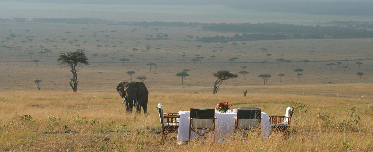 Luxury Small Group Journeys African Safari Bush Dining