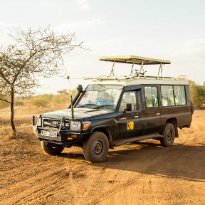 Africa Tanzania Safari Vehicle