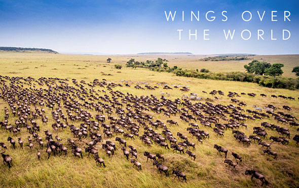 Africa Wings Over East Africa