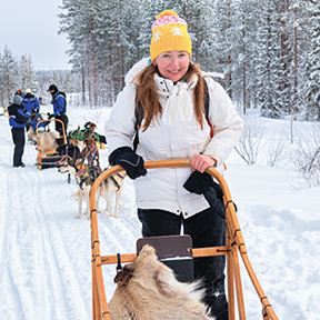 Europe Lapland Finland Saariselka Dog Sledding