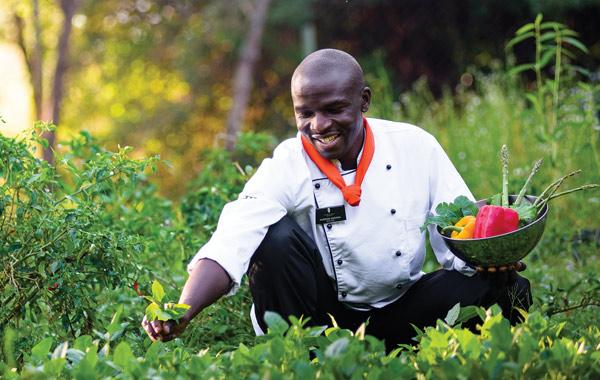Kenya Olonana Staff Garden Food