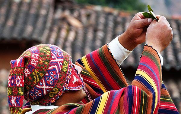 Peru Shaman Coca Leaves