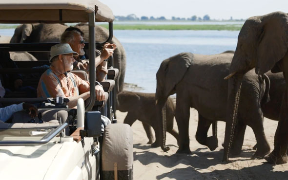 Botswana Safari in Style Video