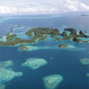Treasures of Palau