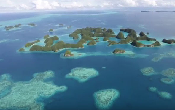 Discover the Treasures of Palau, Our Inaugural Inspiring Expedition in 2017